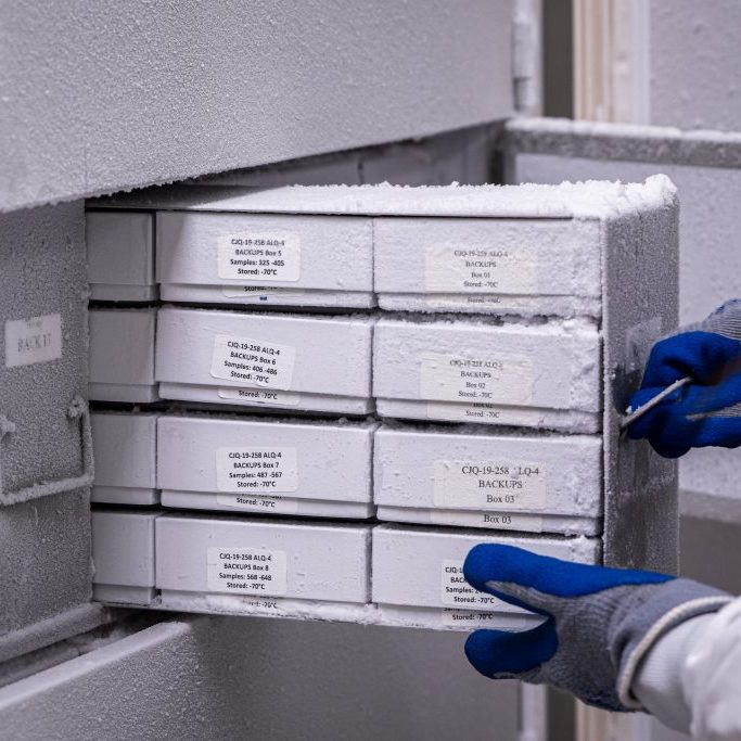 Scientist removing samples from freezer